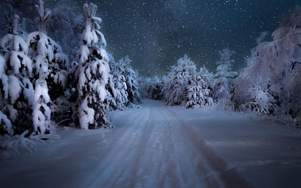 звездная зимняя ночь
