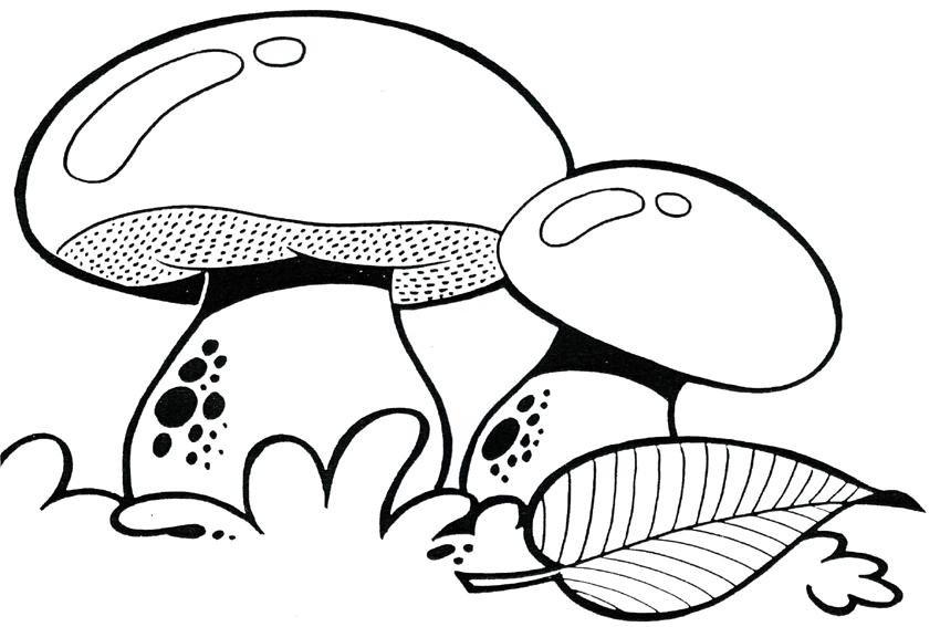 Картинки грибов трафарет