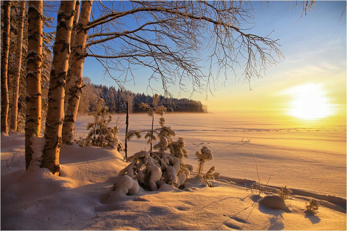 картинки с добрым утром зимний пейзаж северной
