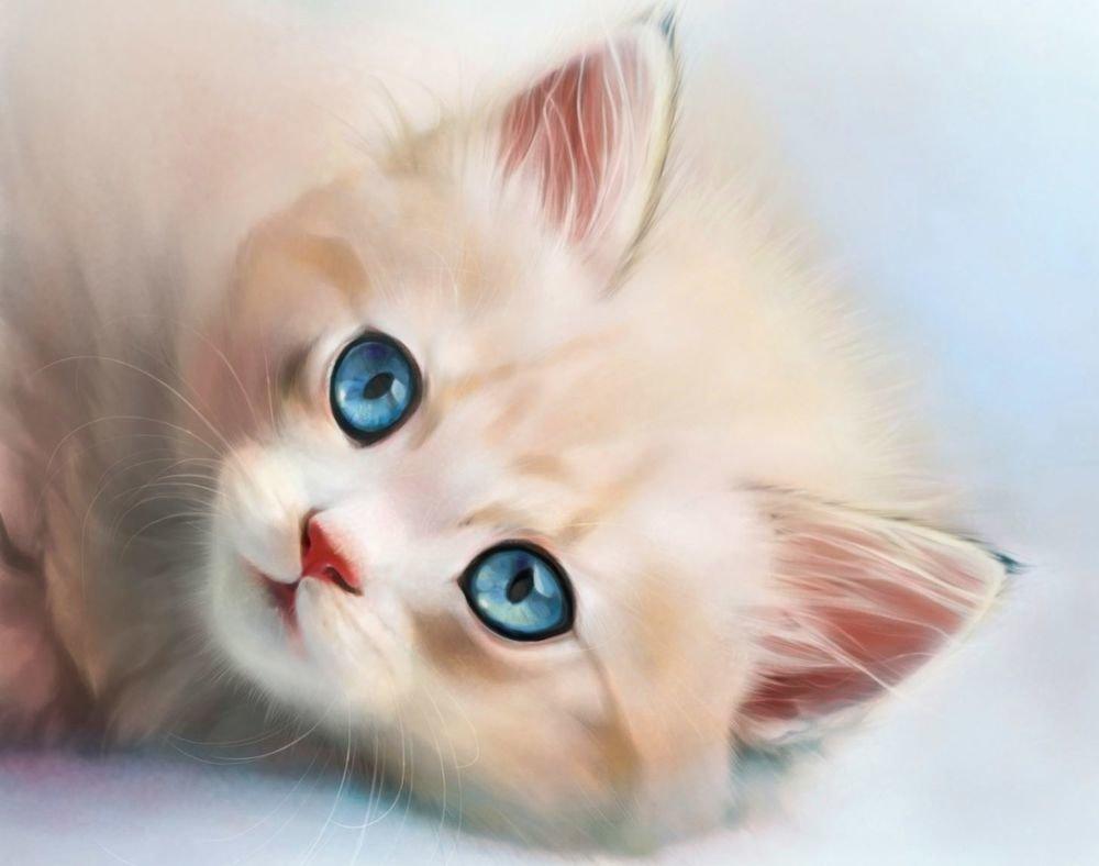 сделанные картинки на аватарку котенок работаю маслом