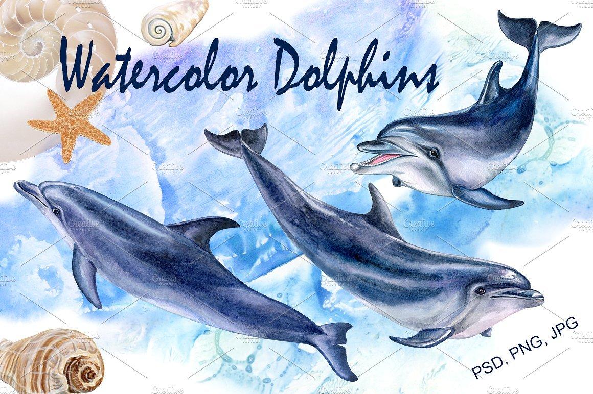 Арт открытки, почта россии открытки дельфин