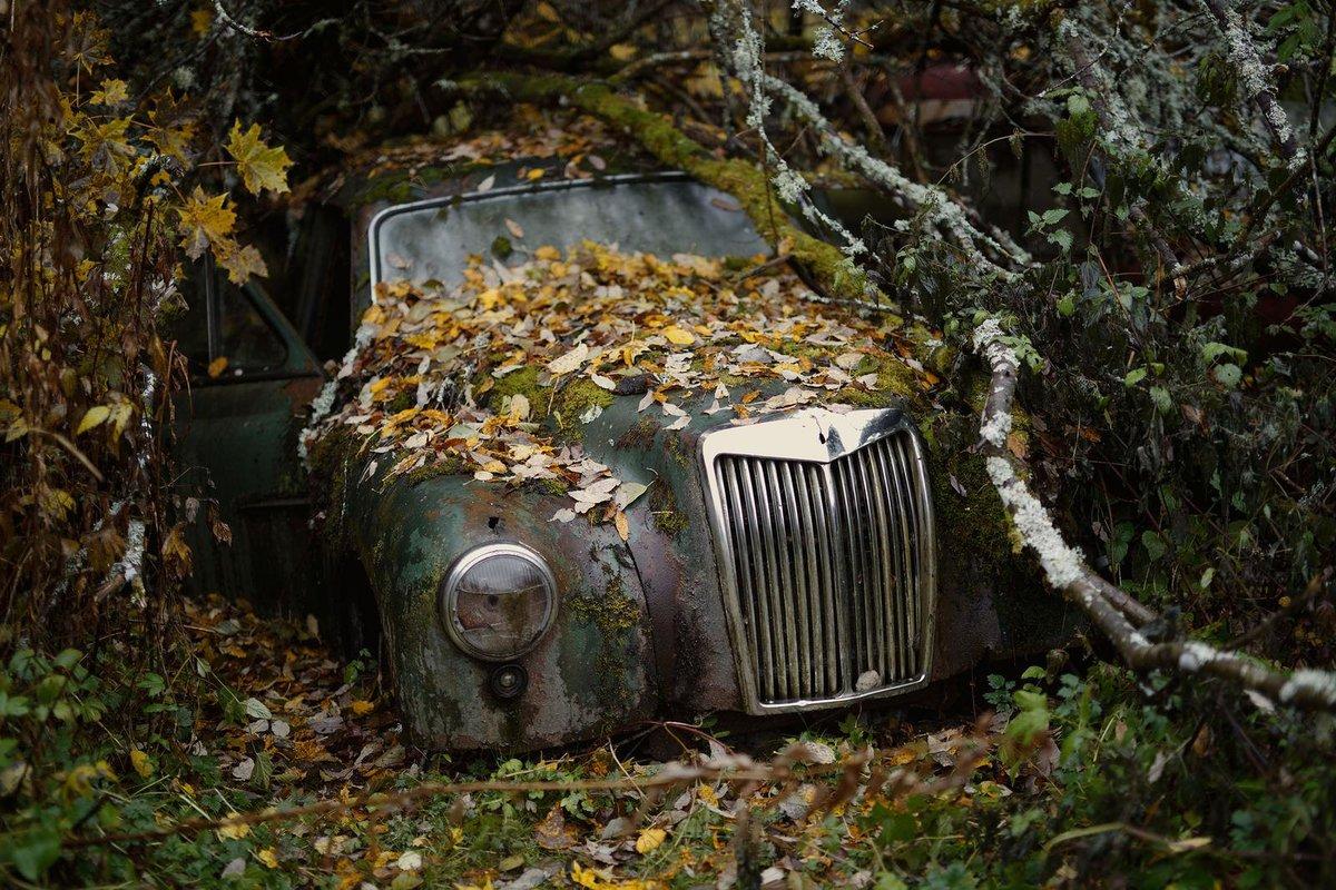 Картинки забытых машин