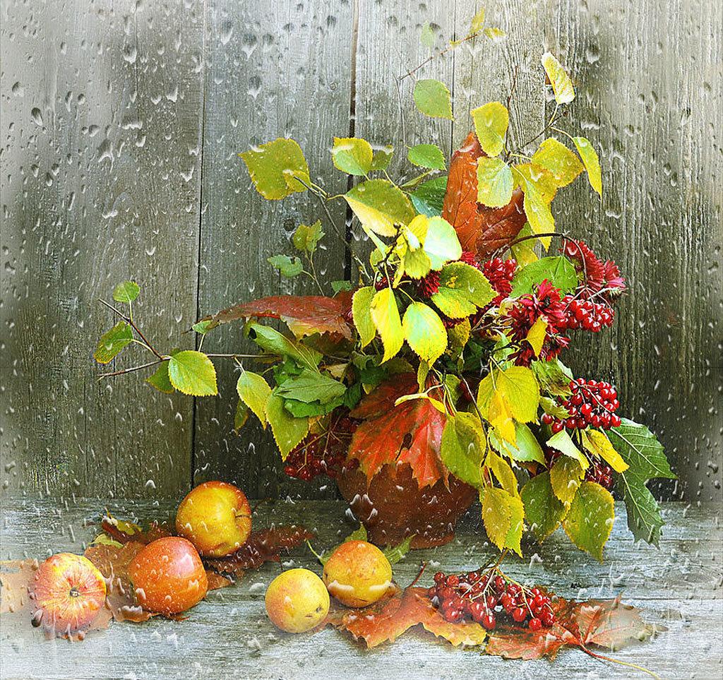 Фото натюрморт с сухими листьями
