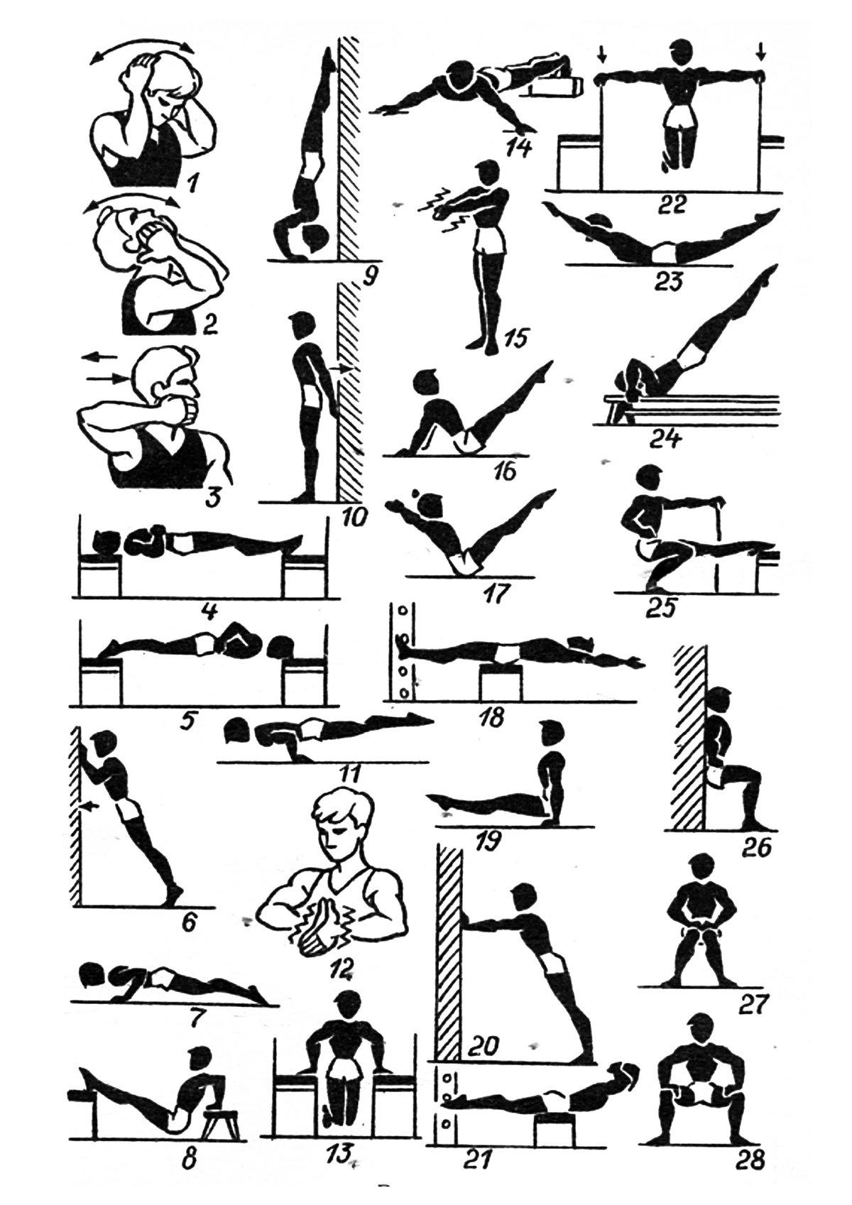 комплекс статистических упражнений в картинках тофикарифов