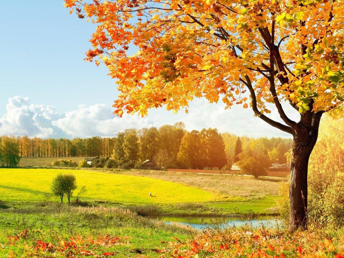 Открытки с пейзажами природы, картинки поздравление