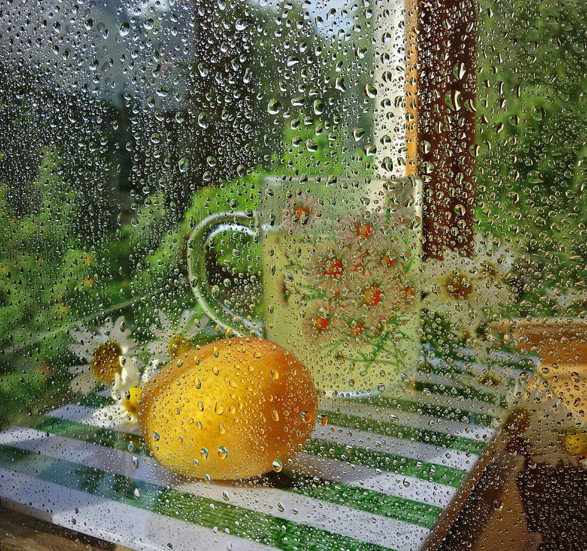 доброе утро после дождя картинки