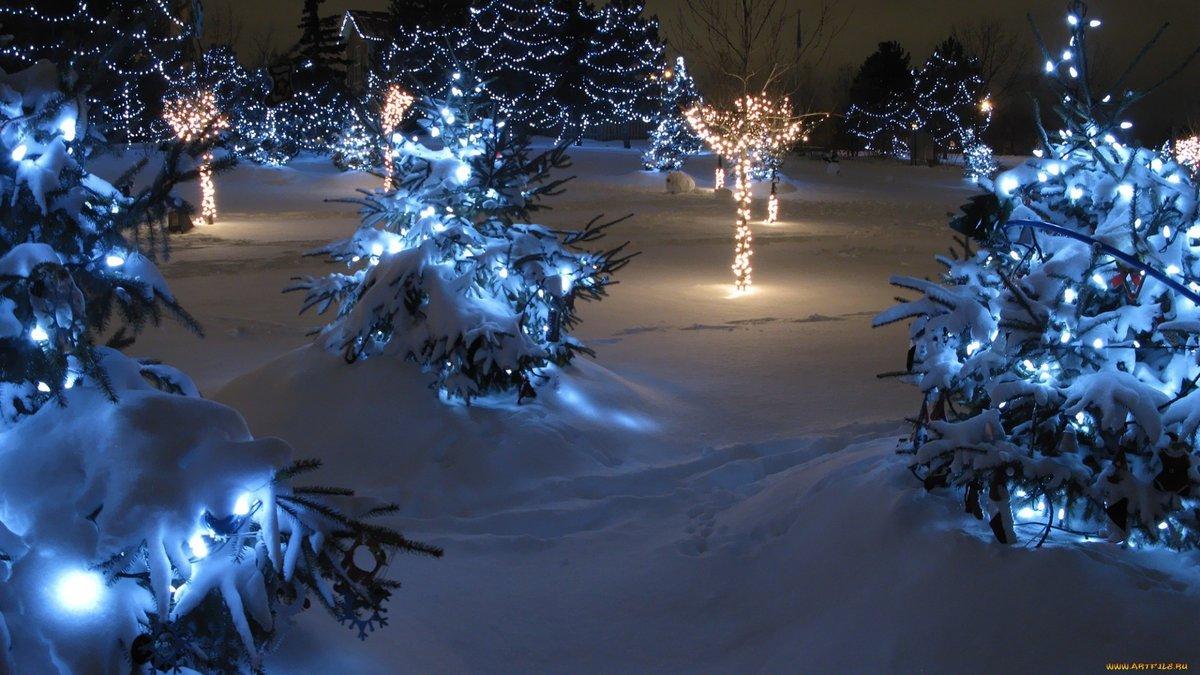 Фото красивое зимнее с новым годом