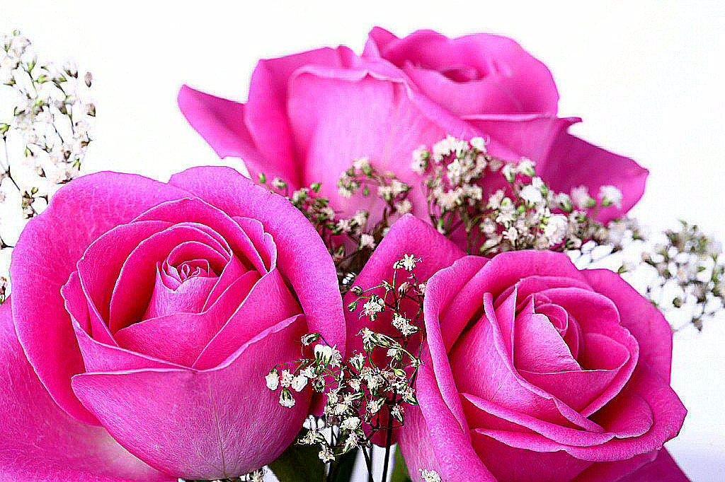 Открытка для цветов девушке