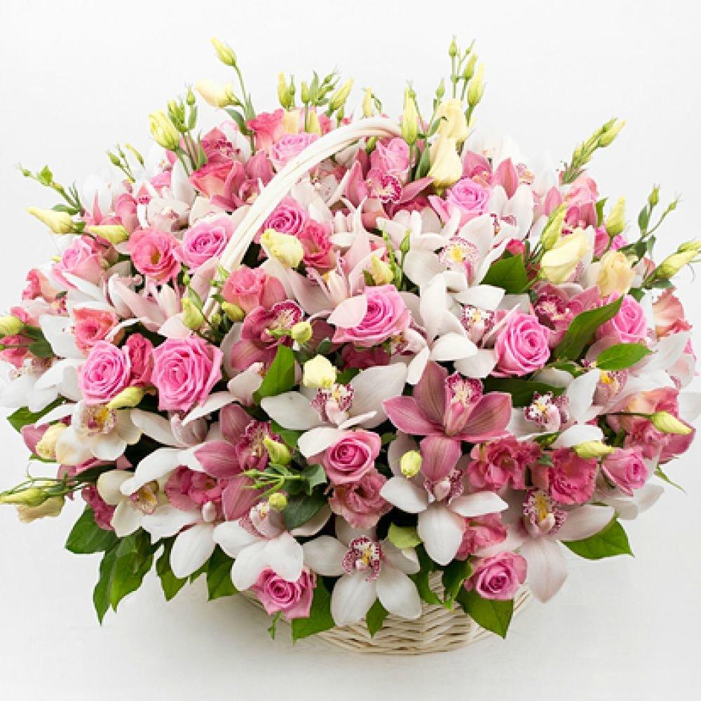 Полежаевская, букет корзина орхидей фото