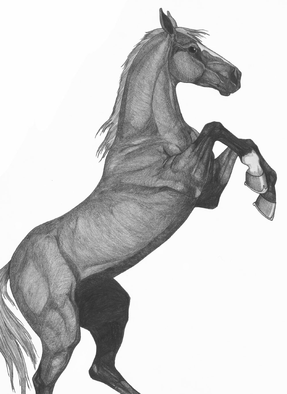 Ребенка, рисунок на лошади