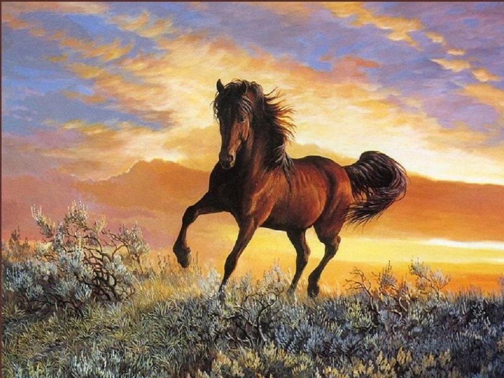 Красивые открытки лошади, картинках прикольные картинка