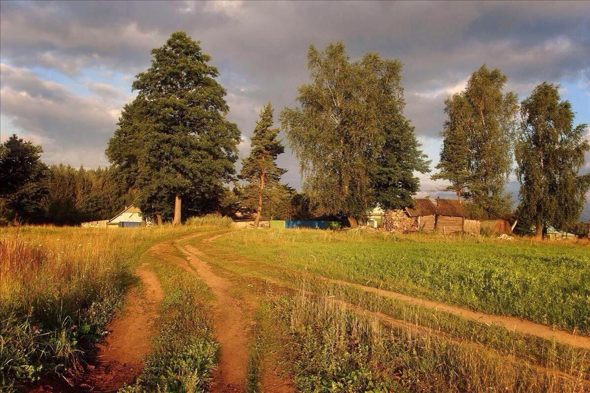 сельских фото