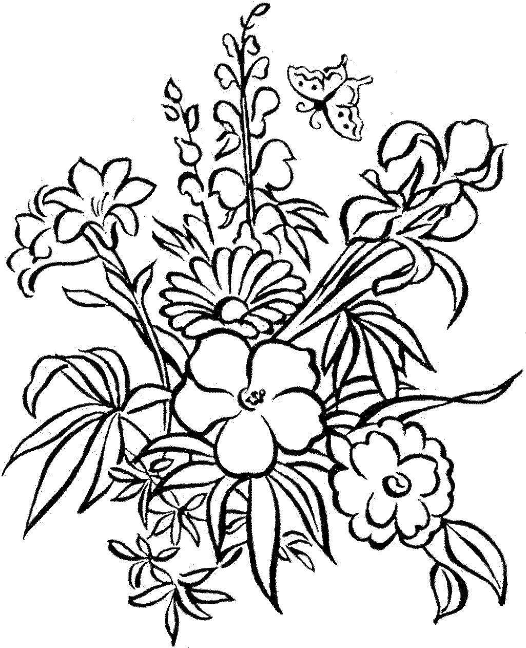 Красивые цветы для раскраски картинки