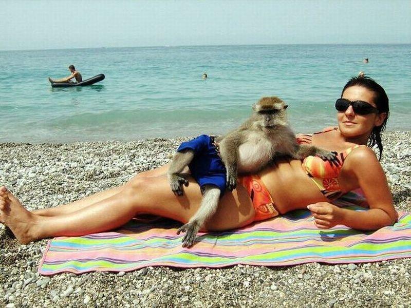 Смешные картинки про отдыхающих женщин прикодьнык