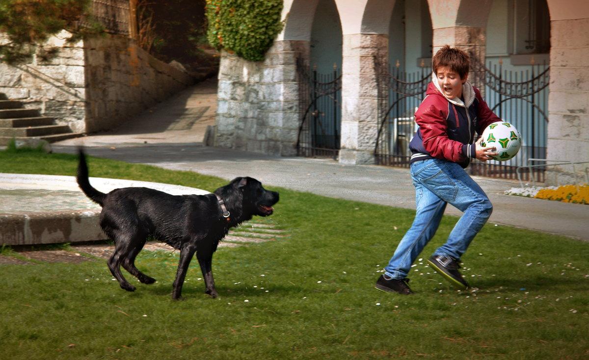 не по-правилам #игра #мяч #футбол #ребенок #собака