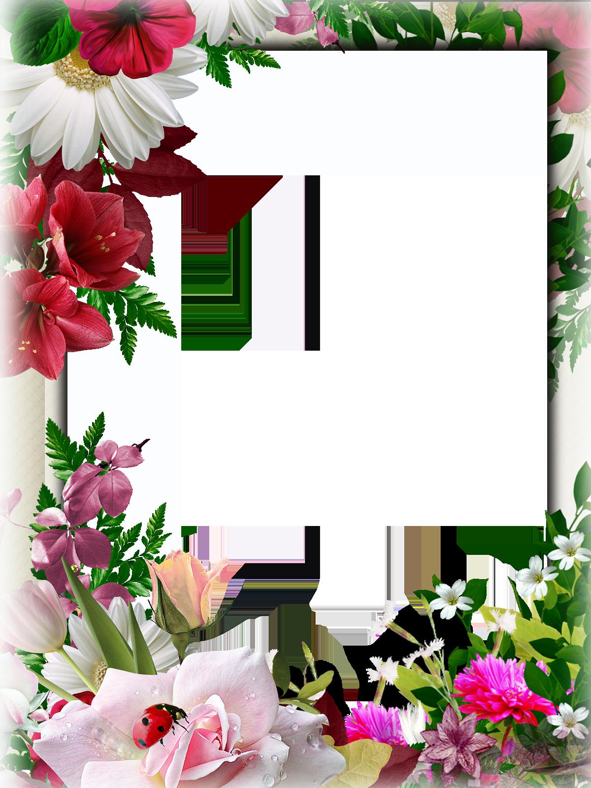 Рамка красивая для поздравления с днем рождения, нарисованная