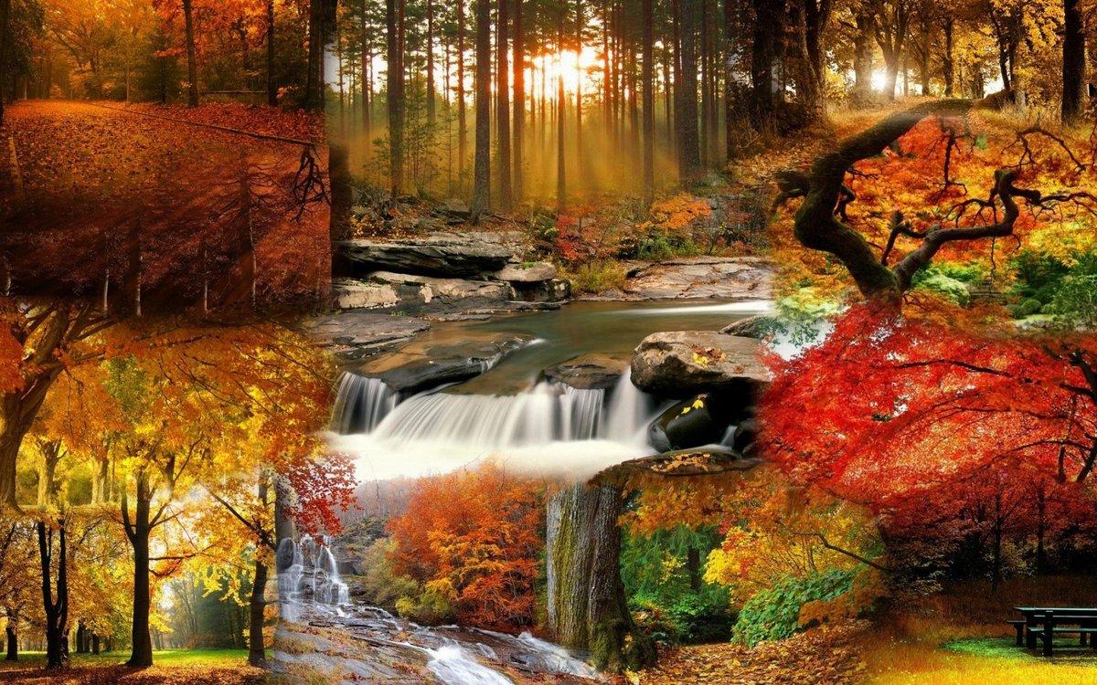Картинки для пк осень