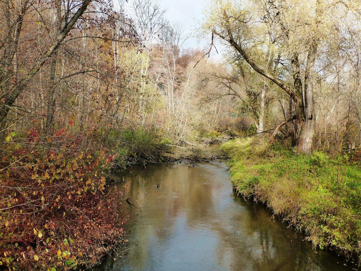 Осенний пейзаж. Река Сходня