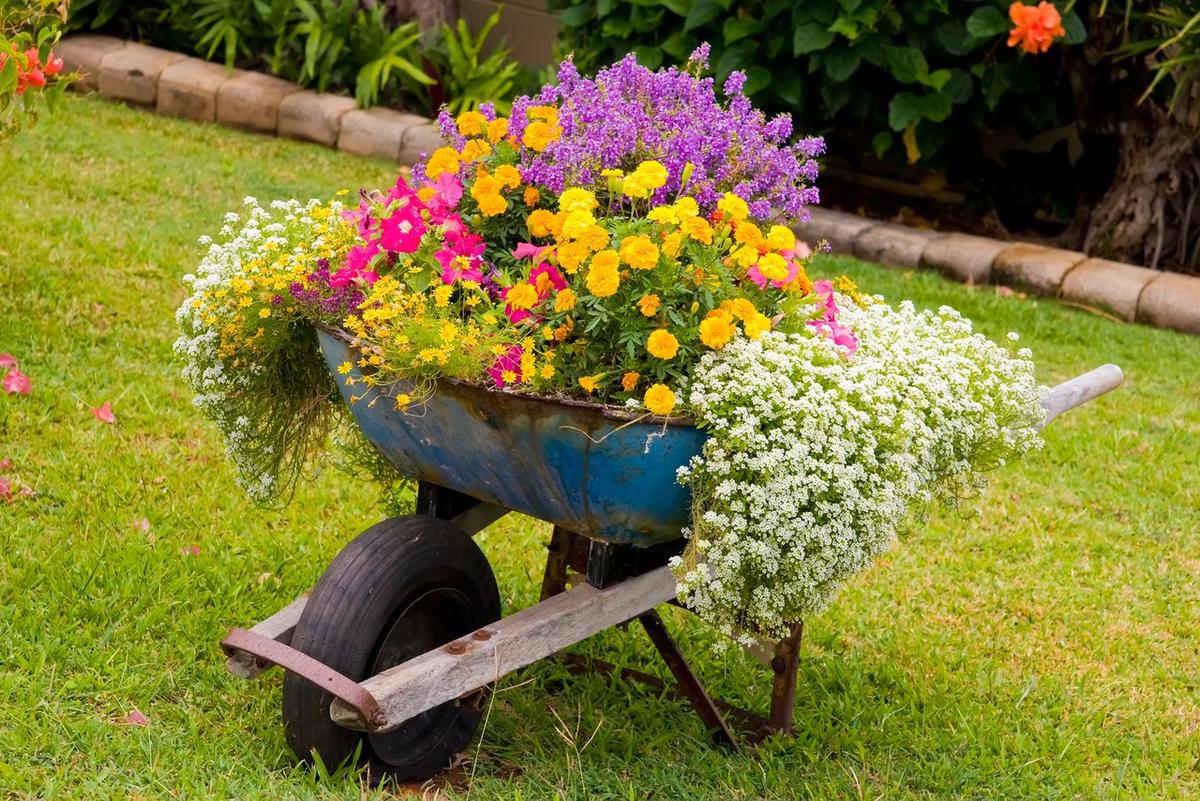 как можно украсить сад