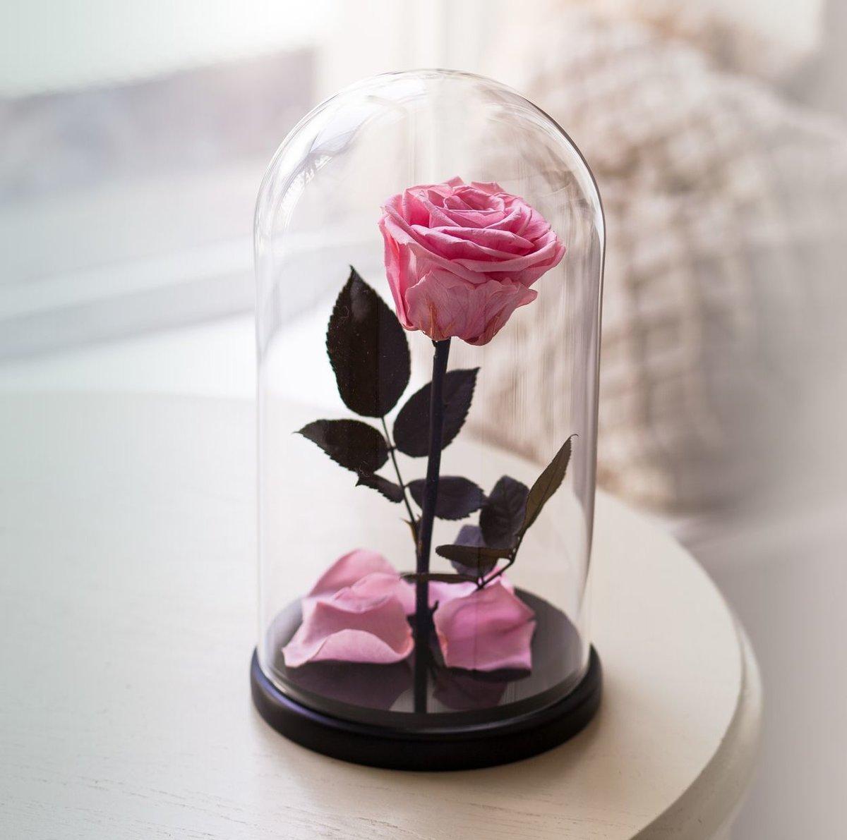 Букеты цветов, необычные живые цветы для подарка