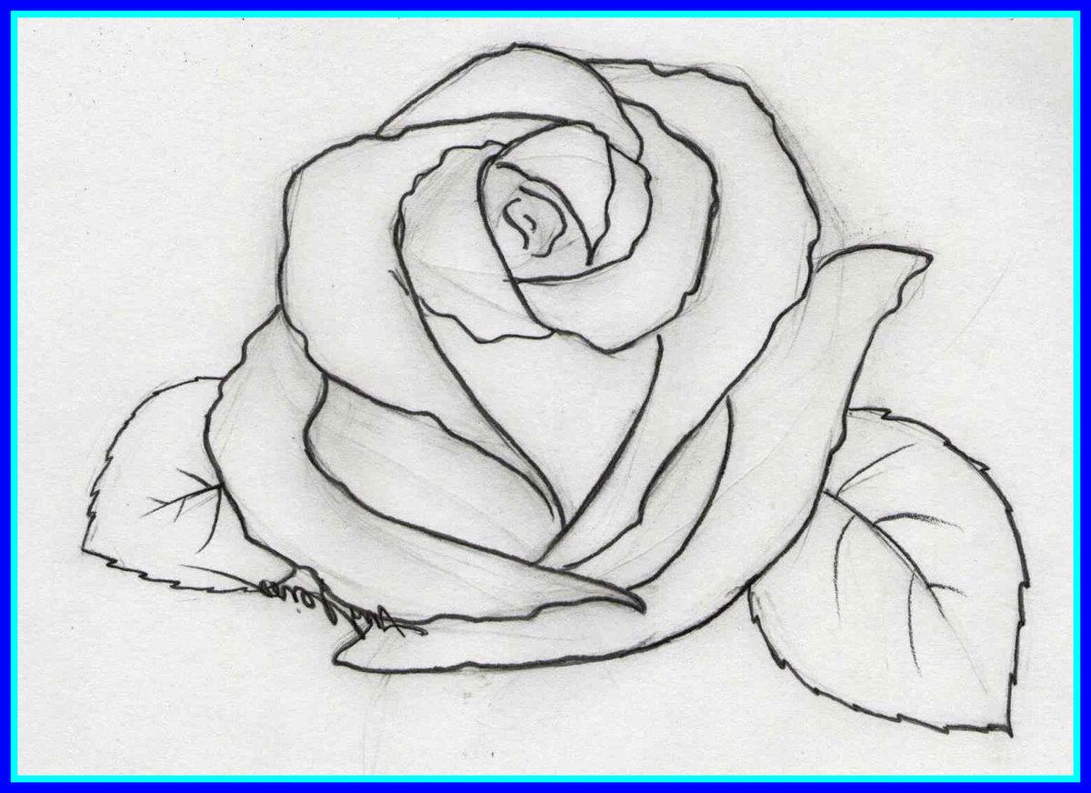 Рисунок карандашом для срисовки легкие и красивые цветы