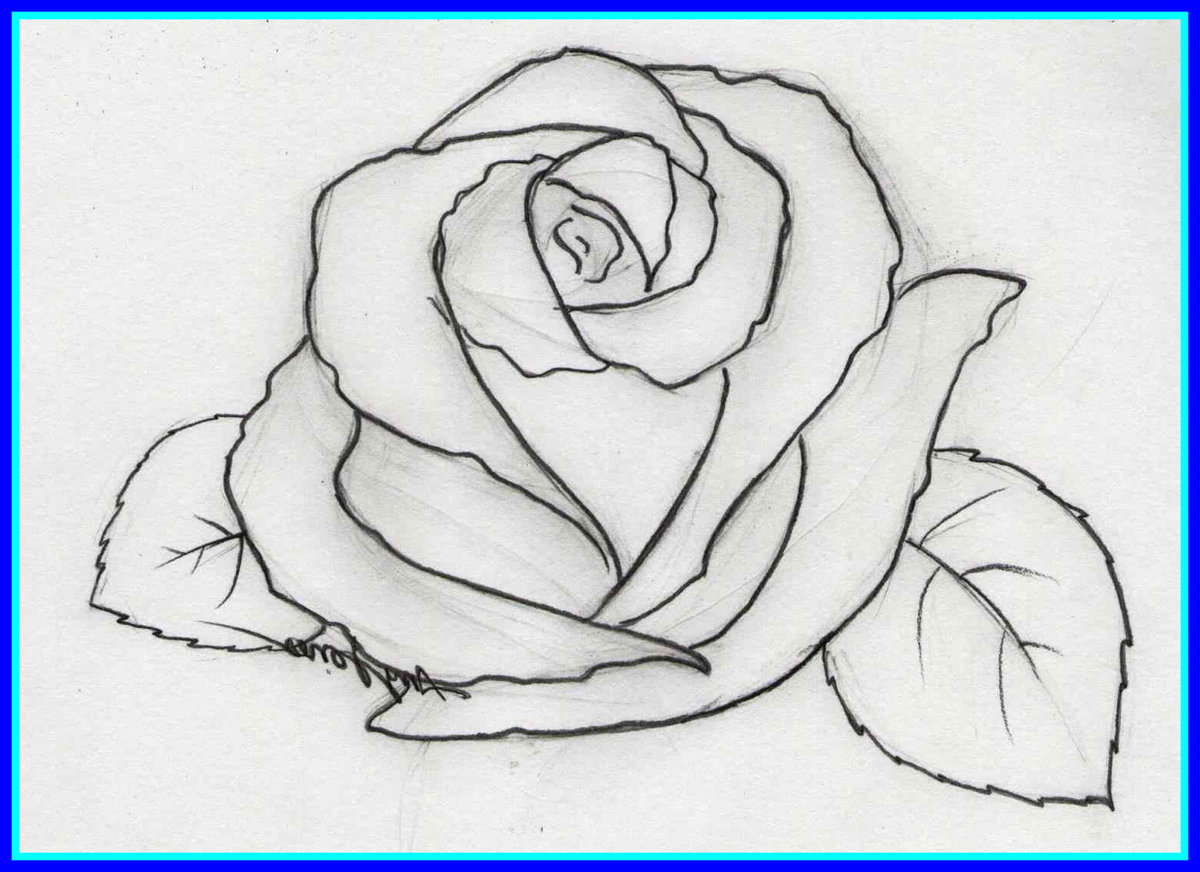 делится простые картинки для рисования карандашом простые риэлторов нижегородской