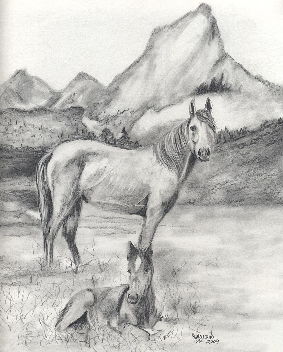 Картинки пейзажи животных карандашом