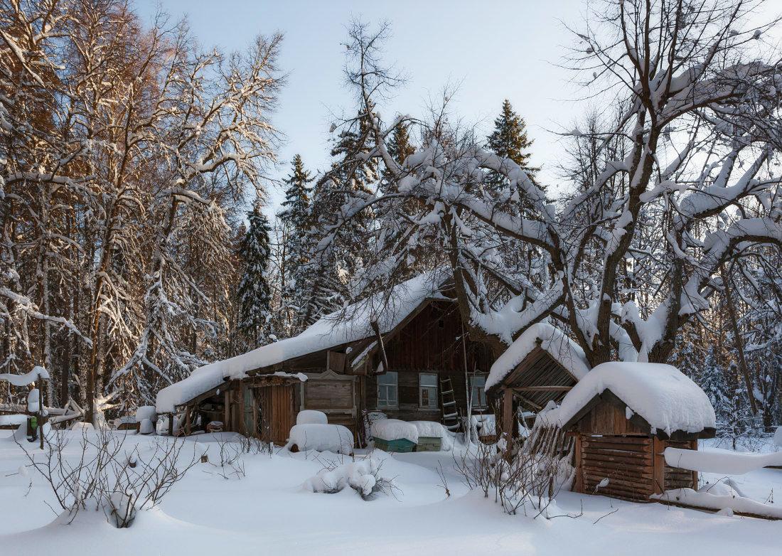Картинки изба в лесу зимой