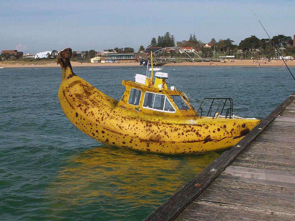 осенним смешные фото яхт кинотеатр октябрь был