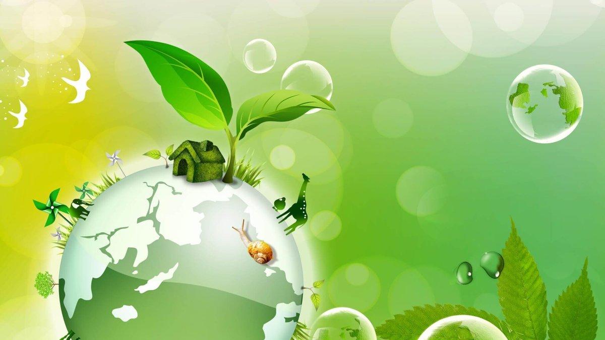 Гифка экология в доу