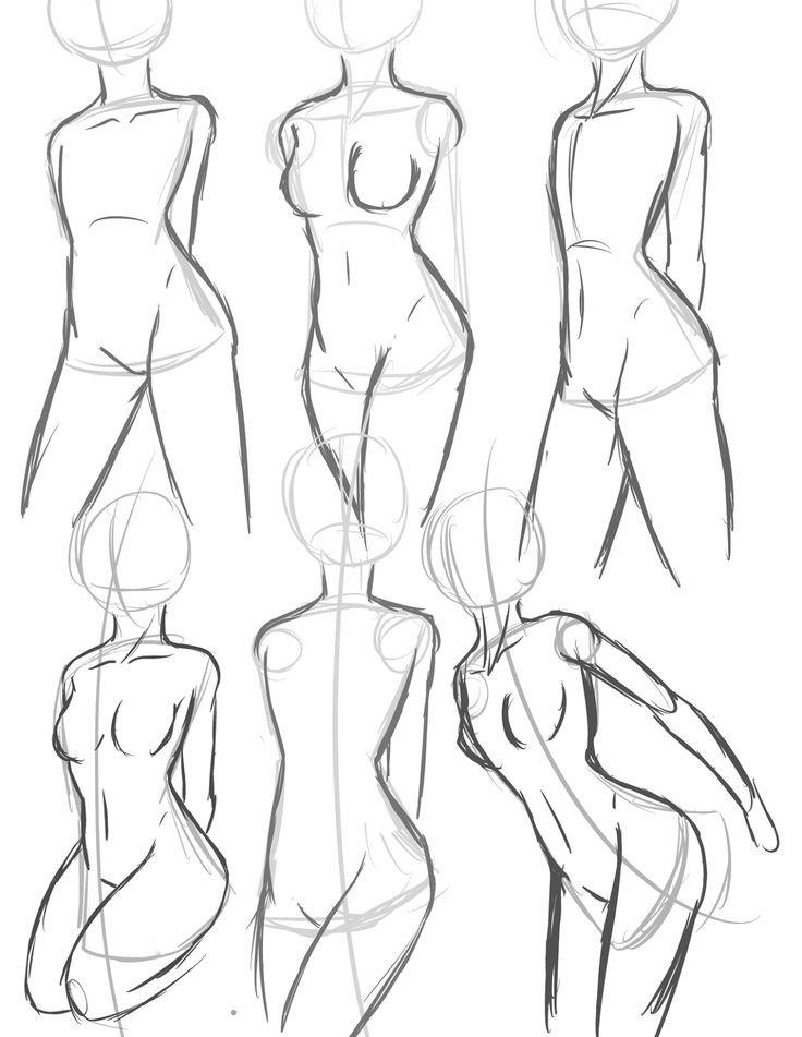 Anime Anatomy Basic Drawing Tutorial Japanese Anime Art Drawing