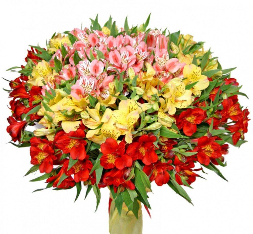 Цветы весны в букетов названия, цветов вокзал барнаул