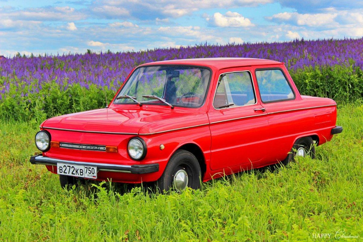 фото автомобиля запорожца плетения отличаются сочетанием