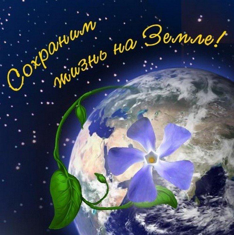 Открытки к всемирному дню земли, февраля конкурс