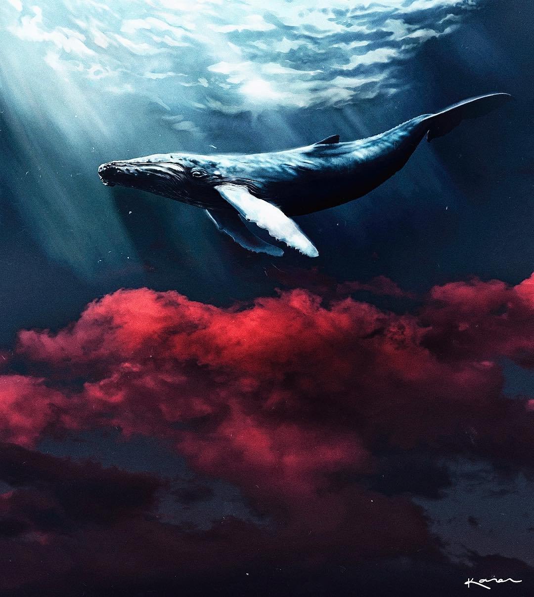 картинки с китами в небе ночной