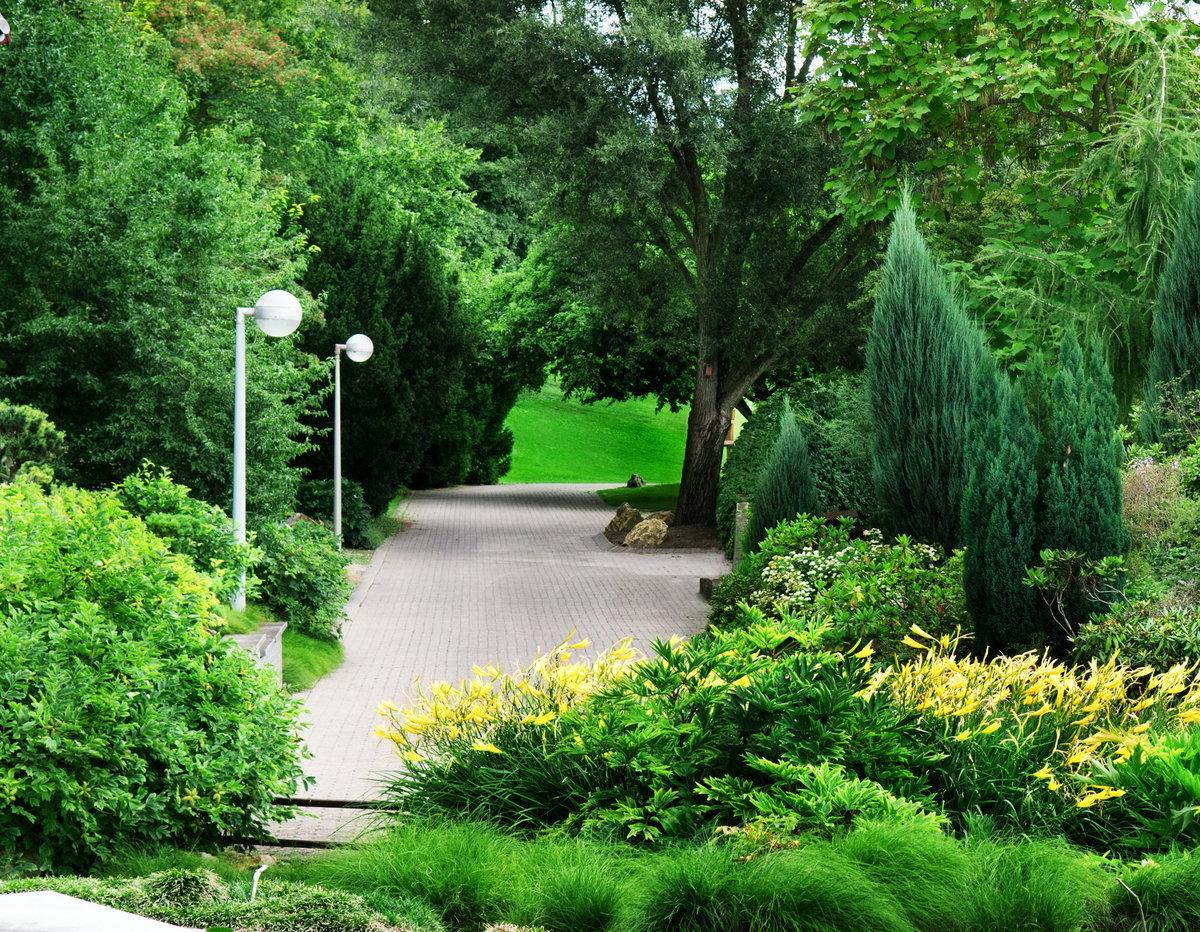 Красивая парка картинки