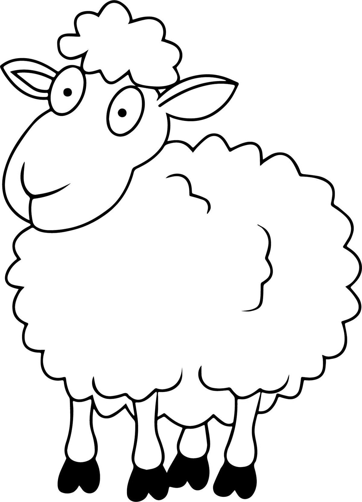 Картинки овечек нарисованные, красивые прикольные гифки