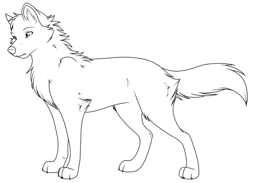 распечатать раскраски с волками территории которого