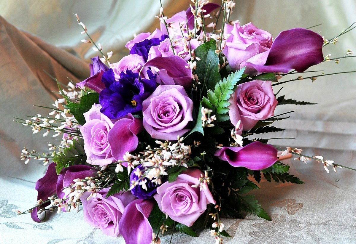 Розы дешево, 25 цветы в букеты фото hd