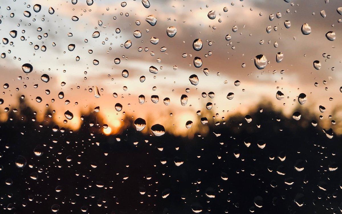 отметить, дождь картинки фото на телефон бассет-хаунд несмотря