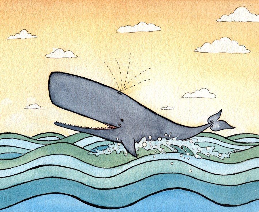 Картинка китов прикольная