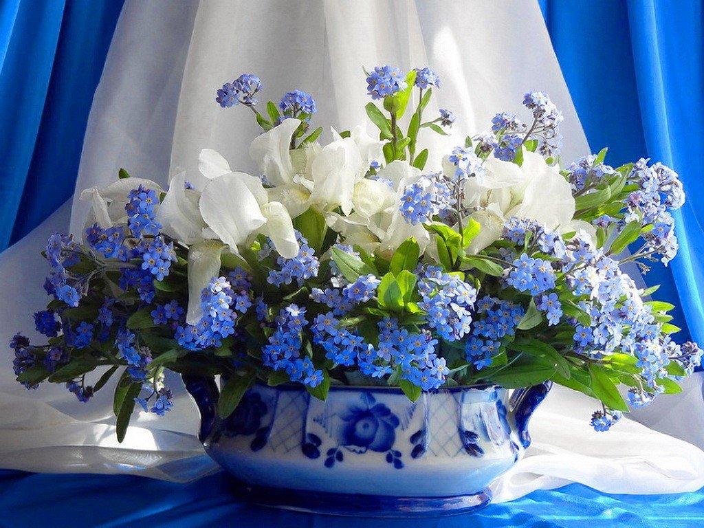 Открытка с голубыми цветами с днем рождения, солнышком