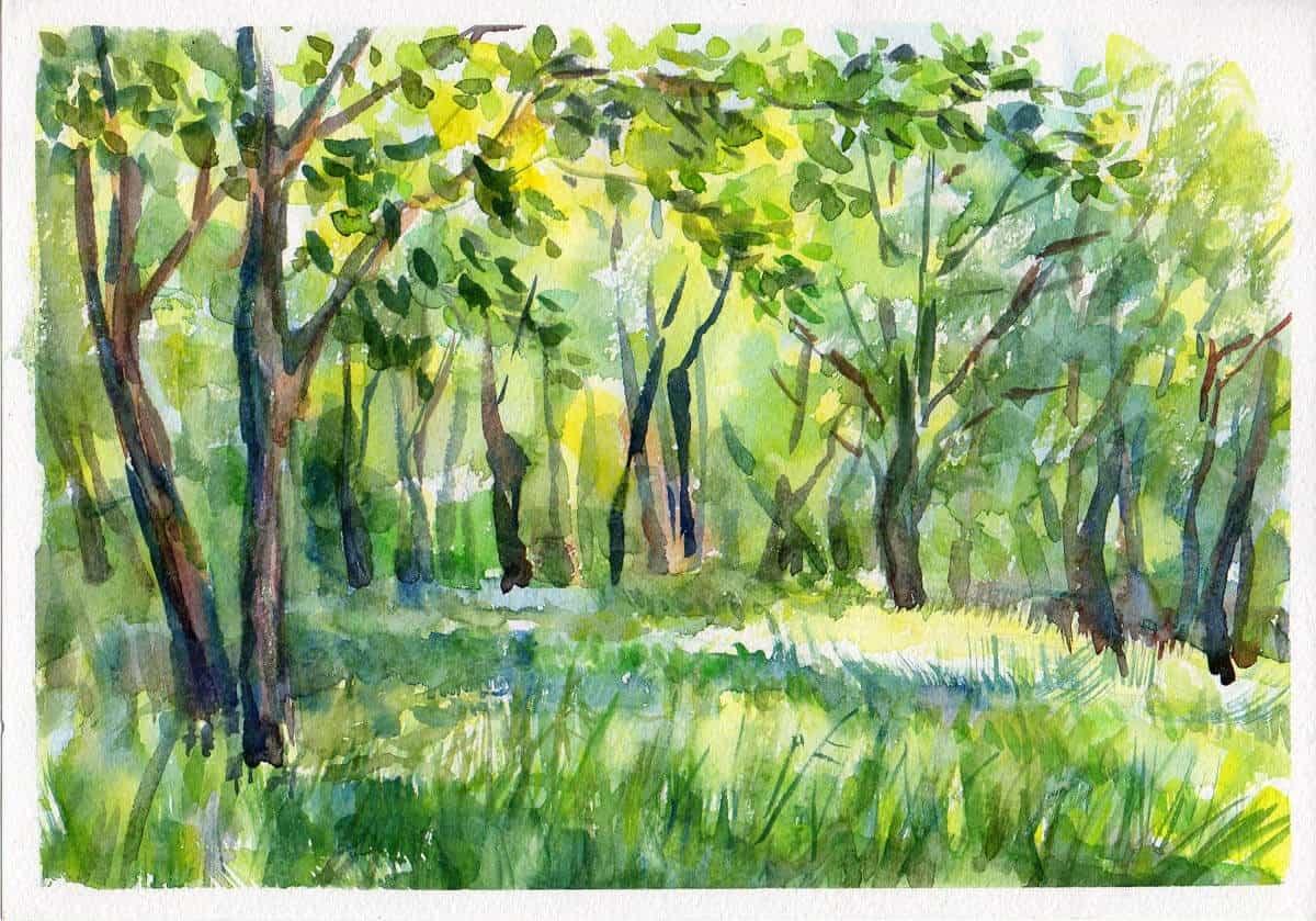 рисунок лесная поляна красками вас