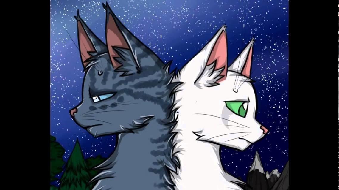 Коты воители в картинках