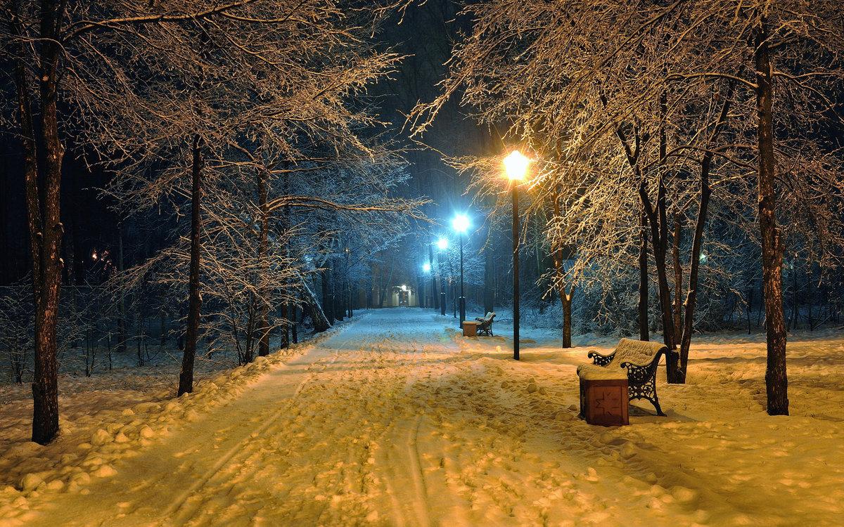 долго, красивые фото ночной зимы жаль