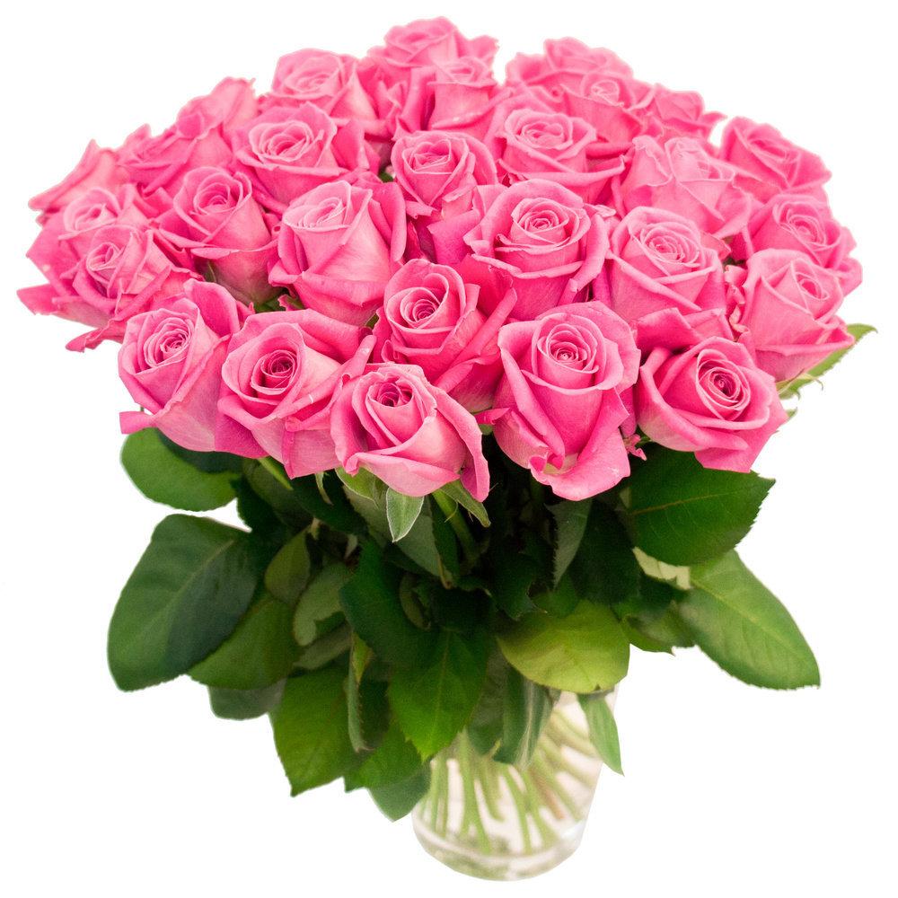 Пацанам февраля, открытки цветок роза