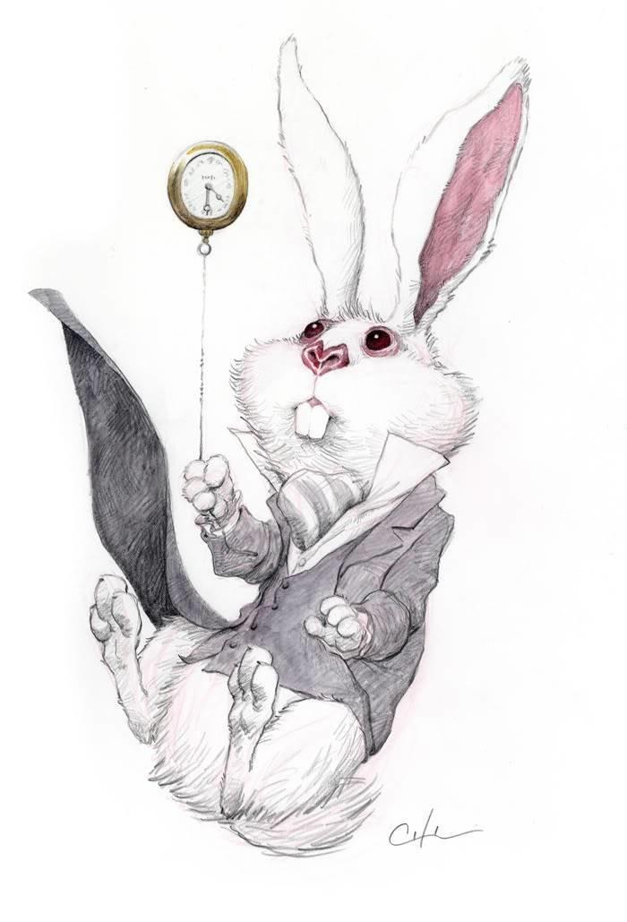 Прикольные рисунки заек хабаровск