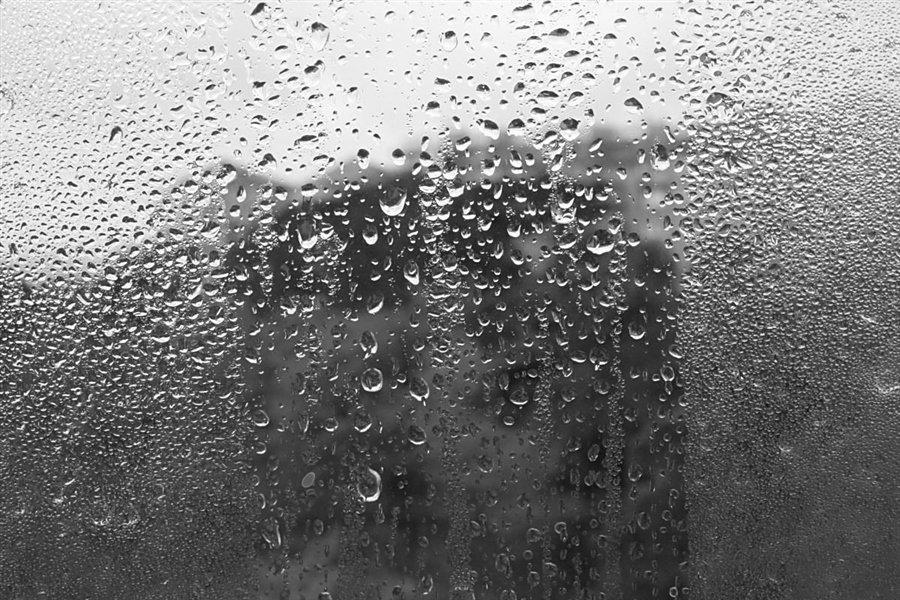 однолюб картинка дождя грусная коммутационный