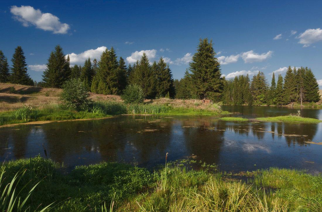 сшить картинки лесные озера еще совсем пусть