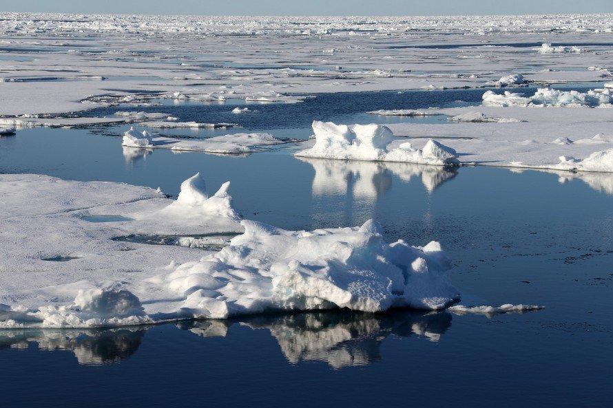 Северный ледовитый океан в картинках